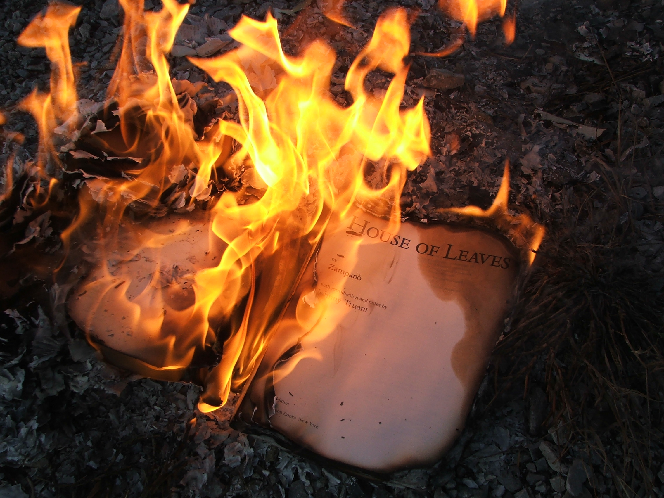Fire (Book)