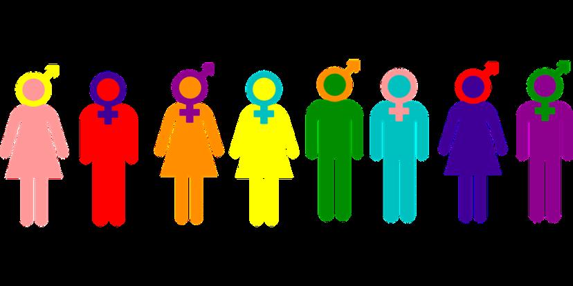 News_Aden_Gender_Pixabaypng
