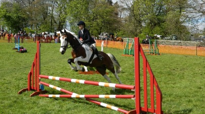 sports_equestrian-club_pixbay