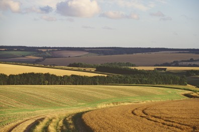 Opinions_Heberly_Mere - 'prairie' monoculture field landscape_Natural England_flickr
