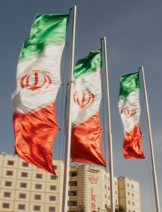Opinions_Walker_Iranian Flags_A.Davey_flickr