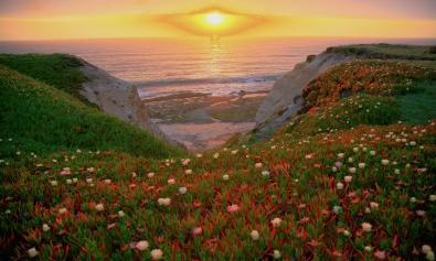 Features_Earth Day_Krysten Heberly_flickr user_Steve Jurvetson  (1).jpg