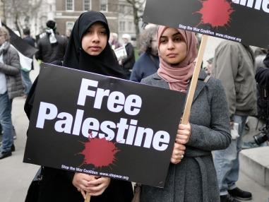 Opinions_Quashon_Gaza_flickr_Alisdare Hickson.jpg